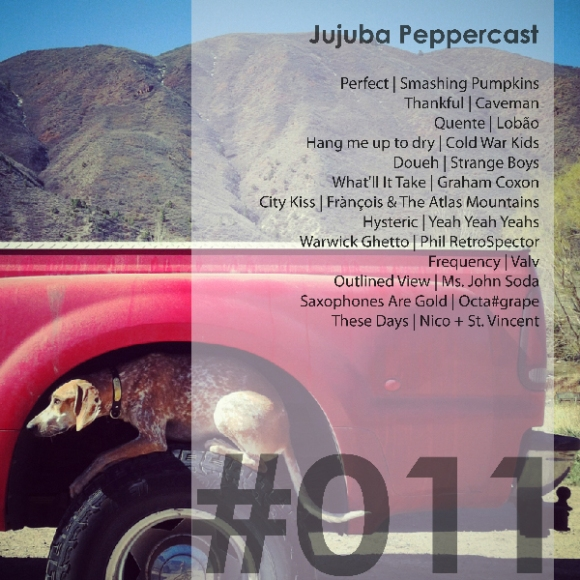 Jujuba Peppercast 011