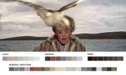 Os Pássaros - Alfred Hitchcock